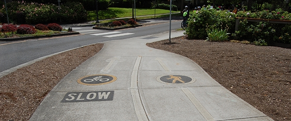 Street icons for bicycle and pedestrian