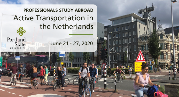 2020 Netherlands Study Abroad Banner - PROFESSIONALS.png