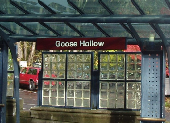 Goose_Hollow_0.jpg