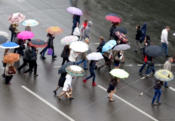 pedestrians-under-umbrellas-1415779889_61.jpg